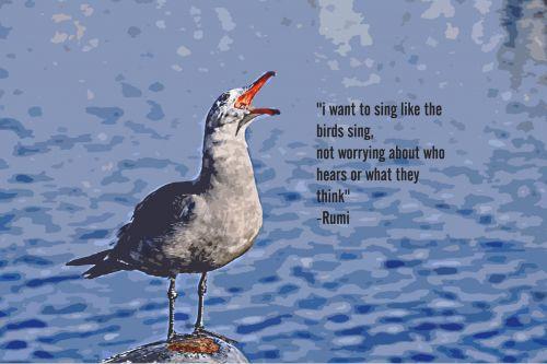 nori, dainuoti, paukščiai, ne & nbsp, nerimauja, girdėti, galvoti, rumi, kajakas, daina, kepuraitė, tapybos, dažymas, vaizdas, kajakas & nbsp, dainuoja, paukštis, kajako daina