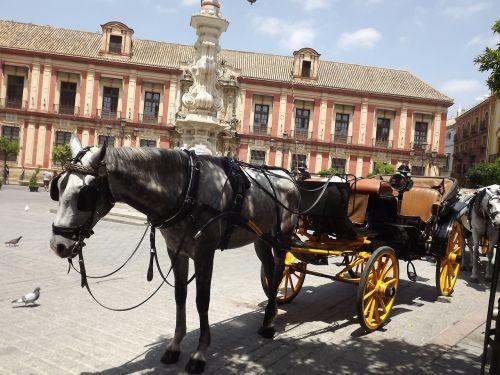 sevilija,arklys,plaza,miesto pėsčiųjų kelionė,Miesto centras,Turgaus aikštė