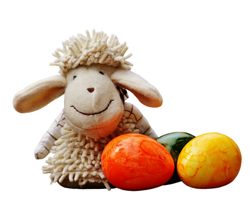 avys,kiaušinis,spalvinga,pavasaris,Velykos,papuoštas,figūra,saldus,apdaila,schäfchen,gyvūnas,spalvos,spalva,izoliuotas,išimtis,Iškirpti,pasėlių auginimas