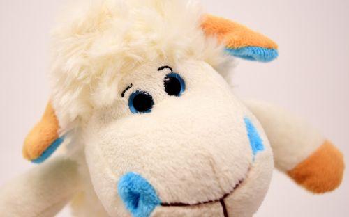 avys,pliušas,minkštas žaislas,linksma,žaislai,juokinga,meškiukas,mielas,purus,saldus,linksma,schäfchen,figūra,iškamša,išvalyti