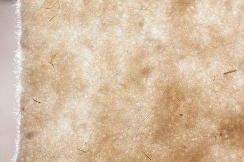 avių vilnos,avių vilnos veltinis,natūralus pluoštas,natūralus produktas,veltiniai,Viduramžiai,viršutiniai drabužiai,minkštas,linksma
