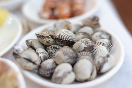 lukštas,gaidys,beolgyo,clam