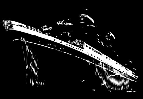 laivas,valtis,kruizas,atostogos,vandenynas,laivas,turizmas,prabanga,transportas,gabenimas,jūra,kelionė,keleivis,kelionė,kelionė,kelionė,šventė,nemokama vektorinė grafika