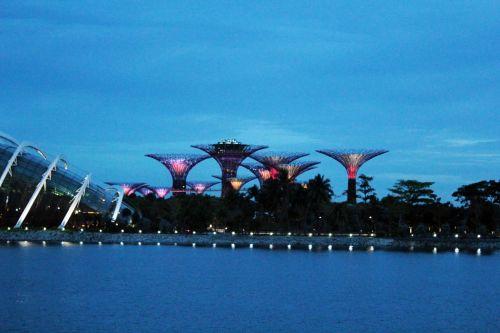 Singapūras, grožis & nbsp, Singapūras, metalai, struktūros, architektūra, žibintai, miestas, dangus, naktis, mėlynas & nbsp, dangus, mėlynas, naktį & nbsp, žiburiai, kelionė, Singapūras