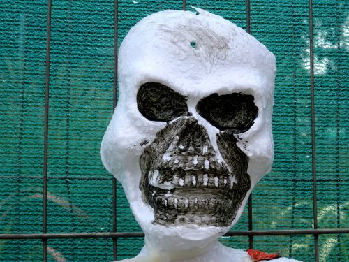 skeletas, skeletas, kaukolė, kaukolės, panika, baugus, Halloween, ragana, raganos, siaubas, siaubingas, nužudyti, nužudymas, stiebas, persekiotojas, sulaikymas, įsiuvas, gory, vaiduoklis & nbsp, vaiduoklis, vaiduoklis, vampyras, ghouls, vampyras, mirti, mirtis, miręs, Zombie, zombiai, žudikas, skeleto kaulų kaukolė