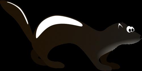skunk,juoda ir balta,gyvūnas,polecat,purkšti,skystas,apsauga,kvapas,šeškas,Omnivore,kvapas,agresyvus,kvapas,dryžuotas,laukinė gamta,laukiniai,mefitidae,rūšis,nemokama vektorinė grafika