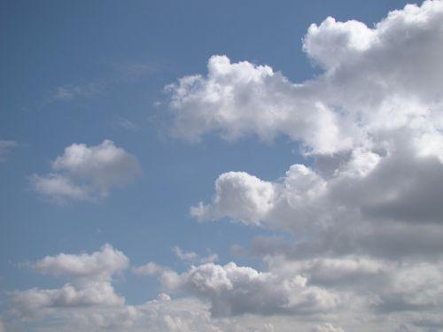 dangus,mėlynas,debesys,cumulus,diena