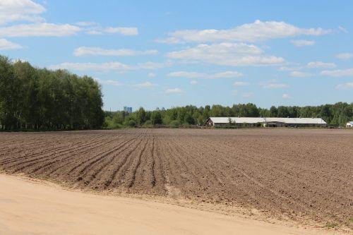 dangus,laukas,žemė,kraštovaizdis,žemės dirbimas,Žemdirbystė,gamta,plūgas,kaimas,natūralus,sezonas,pavasaris,dirvožemis,ūkis,fonas,purvas,mėlynas,auginimas,rusas,auginami,ūkininkavimas,žemė,žemė,ruda,žemės ūkio paskirties žemė,eilutė,dryžuotas,žemės ūkio,kultivuoti,kaimas,horizontas,lauke,Šalis,rusas,arimas,ekologiškas,akras