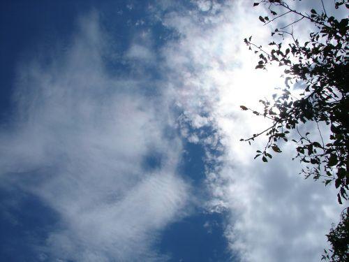 dangus,dramatiškas,gražus,dramatiškas dangus,debesys,šviesa,kraštovaizdis,filialas