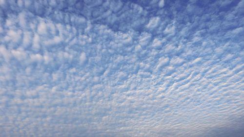 dangus,debesys,mėlynas,balta,oras,Debesuota,cloudscape,meteorologija,purus,aukštas,dangus,dangus,fonas