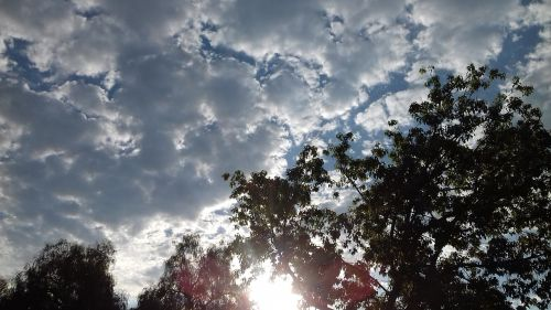 dangus,debesys,diena,cumulus