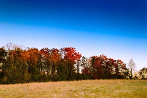 dangus,kraštovaizdis,ruduo,kritimas,saulėtekis,lauke,peizažas,vaizdingas,scena,natūralus,kaimas,kalnas,gamta,mėlynas