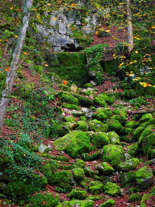 nuolydis, Waldhang, akmenys, bemoost, elsachbröller, urvas, urvas įėjimas, Gorge, Clam, baden württemberg, swabian alb, keršto antstatai, blogas laikrodis, vandens urvas, karstas