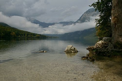 slovenia,ežeras,bohinj
