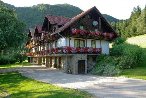 slovenia,Chalet,geraniums