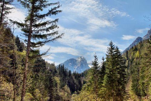 slovenia, kraštovaizdis, vienatvė