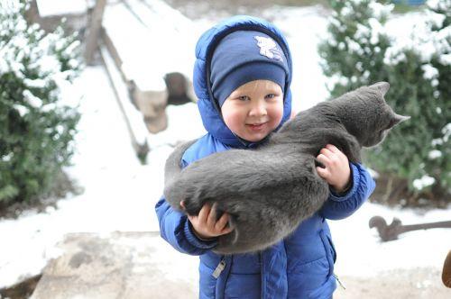 mažas vaikas,kačiukas,žiema,Draugystė