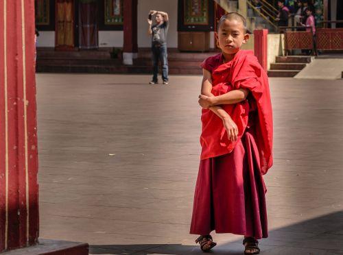 mažas vienuolis,vienuolynas,vienuolis vienuolis,religinis,asija,budizmas,jaunas