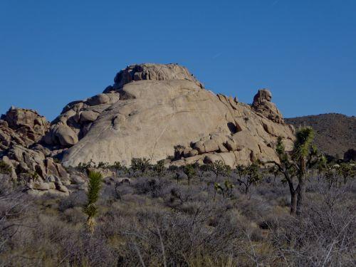 riedulys, lygus, dykuma, piliakalnis, joshua & nbsp, medis, yucca, purvas, šepetys, kraštovaizdis, dykuma & nbsp, karštos & nbsp, spyruoklės, kelionė, lygus akmuo