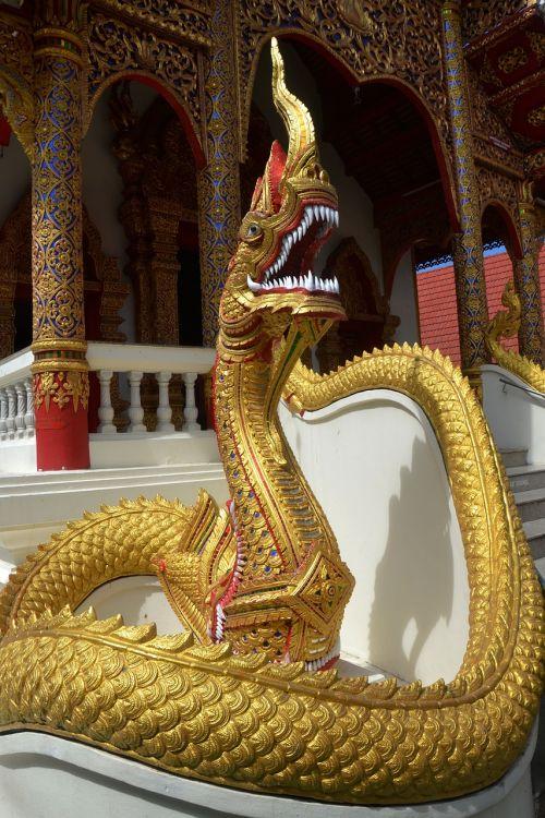 gyvatė,drakonas,šventykla,kirminas,gyvūnas,simbolis,kinai,dizainas,drakonas vektorius,ropliai,asian,modelis,senovės,monstras,tradicinis,Kinija,Tailandas,Chiang Mai,rytas,piktograma,mitologija,apdaila,kinų drakonas,fantazija,legenda,senas,kultūra,tatuiruotė,rytietiškas