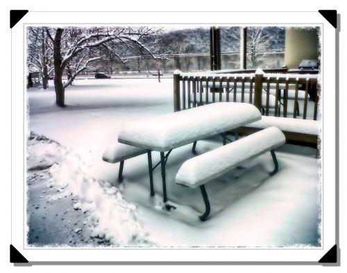 sniegas,stendas,žiema,sušaldyta,padengtas,balta