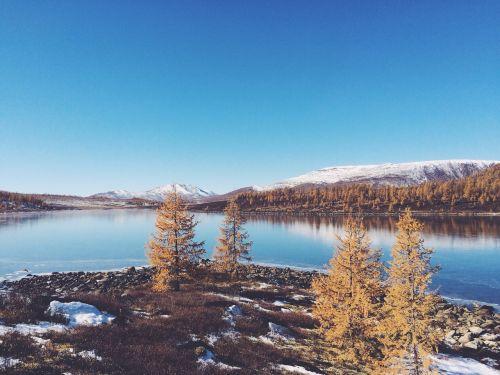 sniegas,šaltas,saulėtas,ledinis,sušaldyta,mėlynas,žiemos peizažas,šaltas oras,kraštovaizdis,lauke