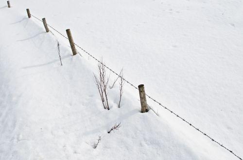 Sniegas,  Sniegas,  Balta,  Šaltas,  Sezonai,  Gruodžio Mėn .,  Sausis,  Kalėdos,  Žiema,  Mediena,  Gamta,  Sniegas