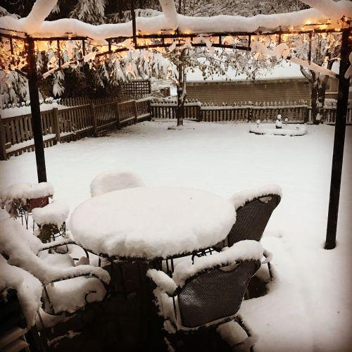 sniegas,galinis kiemas,šviesa,žiema,šaltas,balta,gamta,lauke,kiemas,sniegas,sušaldyta,tvora,žibintai,vadovavo,apdaila