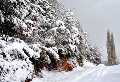 sniegas,žiema,šaltis,šaltas,dabartinis sezonas,ledas,sniego audra,snieguotas,ledas,snieguotas kelias,sniego kraštovaizdis,snieginiai kalnai,stiprus sniegas,Turkija,gamta,atvirukas,ledinis kelias,siauras kelias,snieguotas nuolydis,snieguotos medžiai