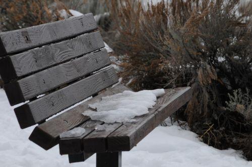 stendas, sėdynė, sėdėti, sniegas, žiema, snieguotas, šaltas, snieguotas suolas