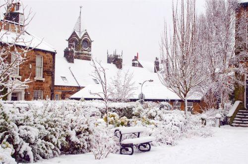 snieguotas, sniegas, snieguotas, sezonai, žiema, medis, medžiai & nbsp, be & nbsp, lapų, ledas, balta, gražus, kraštovaizdis, temperatūra, minusas, snaigė, sniegas & nbsp, viršelis, spalvingas, šlapias, šaltas, stendas & nbsp, pastatas, bažnyčia, snieguotas pastatas