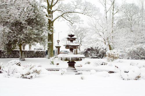snieguotas, sniegas, snieguotas, sezonai, žiema, medis, medžiai & nbsp, be & nbsp, lapų, fontanas, ledas, balta, gražus, kraštovaizdis, temperatūra, minusas, snaigė, sniegas & nbsp, viršelis, spalvingas, šlapias, šaltas, snieguotas fontanas
