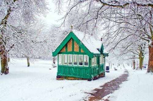 snieguotas, sniegas, snieguotas, sezonai, žiema, medis, medžiai & nbsp, be & nbsp, lapų, namas, ledas, balta, gražus, kraštovaizdis, temperatūra, minusas, snaigė, sniegas & nbsp, viršelis, spalvingas, šlapias, šaltas, parkas, šaligatviai, dangas, snieguotas kraštovaizdis