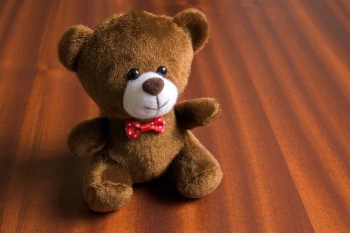 minkštas žaislas,vaikų žaislas,dovanos,suvenyras,žaislas,turėti,meškiukas,žaislo lokys