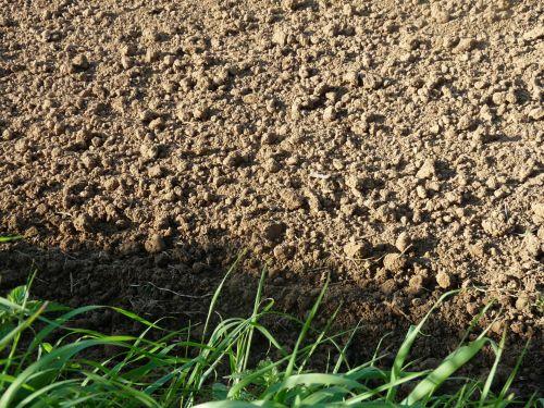 ūkis, žemė, žemės ūkio paskirties žemė, ūkininkas, dirbama, dirvožemis, iki, žemė, purvas, žolė, molis, laukas, dirvožemis