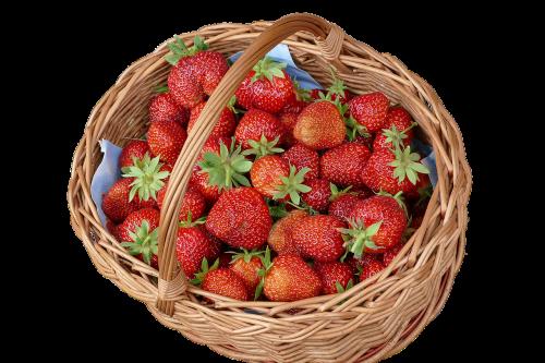 sommerfest,braškės,gluosnio krepšys,vasara,vaisiai,skanus