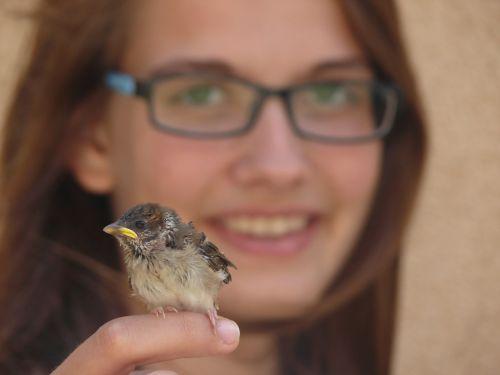 žvirblis,paukštis,švelnus,šypsena