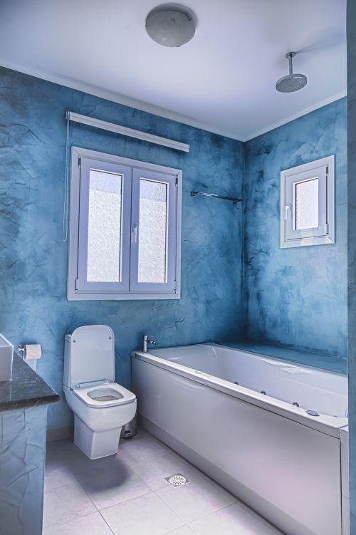 rūšis,higiena,namai,tualetas