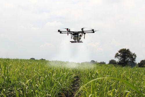 purkšti cukranendrės,cukranendrė,drone ūkis,purkšti,Kolumbija,Žemdirbystė,auginimas,fumigacija,drone,geras lašas,drone asperjando,orlaivis