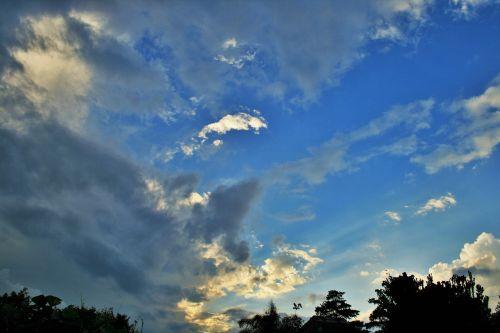 skleisti debesis,dangus,mėlynas,debesis,balta,skleisti,šviesa,medžių viršūnės