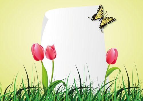 pavasaris,tulpė,drugelis,žolė,pieva,popierius,antraštė