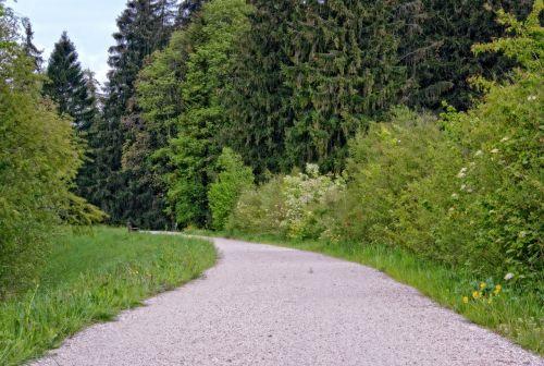 pavasaris,laisvalaikis,atsigavimas,žygiai,juostos,kelias,toli,gamta,pieva,žalias,platus,toli