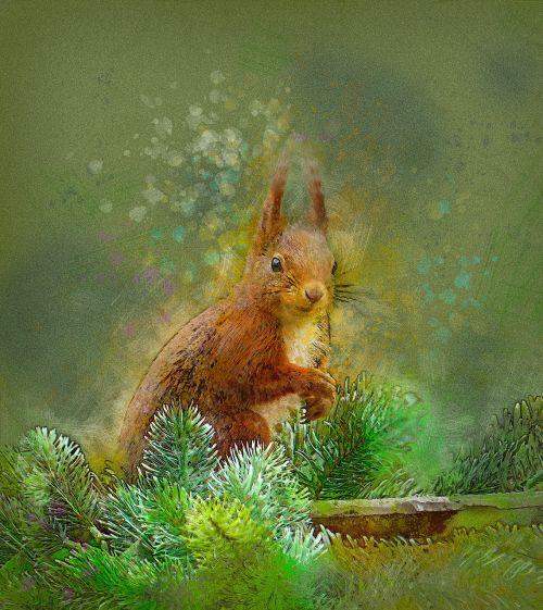 voverė,miškas,gyvūnas,graužikas,gyvūnų temos,laukinė gamta,pūkuotas,miško voverė,oranžinė,krutinė uodega,Iš arti,įdomu,linksma,miško gamta,miško gyvenimas,fauna