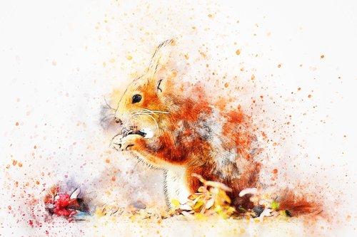 voverės, valgymas, menas, akvarelė, Vintage, gyvūnas, Gamta meninis, Anotacija, dizainas, Aquarelle, dažų Šļakstēties, skaitmeninis menas, skaitmeninis dažai, piešimo, Nemokama iliustracijos