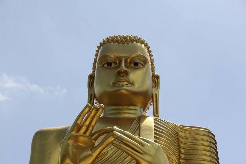 Šri Lanka,meditacija,budizmas,medituoti,asija,religija,dieviškumas,budistinis,kelionė,šventykla,statula,budizmo religija,buda,skulptūra,atsipalaidavimas
