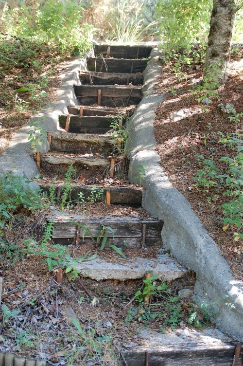 laiptai,palaipsniui,pierre