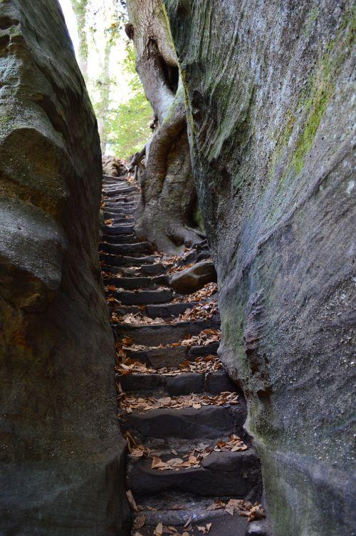 laiptai,uolienų laiptai,gamta,Rokas,laiptinė,akmuo,kelias,kelias,žygis,takas,parkas,kalvotose kalvose,miškas,žygiai,peizažas,pėsčiųjų takas,natūralus,lauke,vasara,vaizdingas,vaikščioti,takas,nuotykis,kelionė,turizmas,tvirtas,keliautojas,reljefas,samanos,lapai,Kelionės tikslas,dykuma,kietas lipimas,gamtos takas,žygių takas,roko takas,akmens laiptai