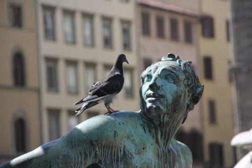 statula,bronza,balandis