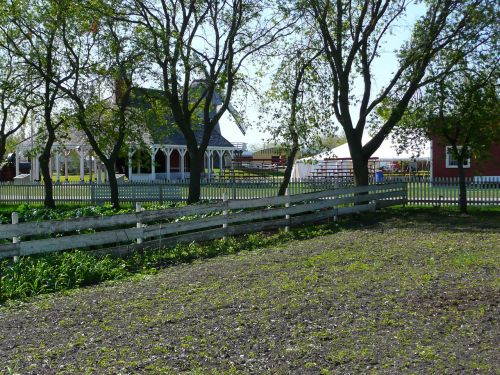 steinbach,Mennonito palikuonys,manitoba,Kanada,namas,ūkininkavimas,laukas,tvartas,Žemdirbystė