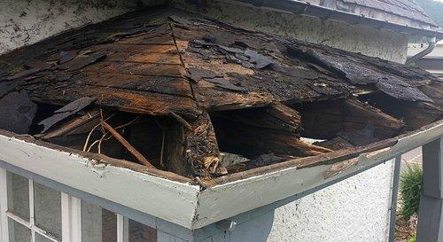 stiebas, įvesties diapazonas, MORSCH, metai, renovuoti, renovacija, suskirstytas, defektas, atnaujinti, nesandarus, stogo, įvesties, priekinės durys, senas duris, statyba, fasadas, namas, vartai, mediena, kupolo, namo įėjimas, plotas, stogo kartono, stogo renovacija, reabilitacijai, dirbti, pinigai, laikas